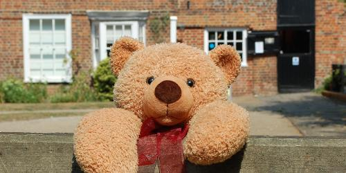 An image relating to Teddy Bear Fun Day (Online)